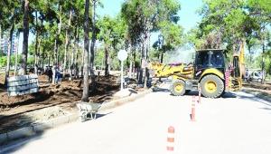Beyazevler Çamlığı'na yeni çehre