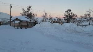 Adana'da Dondurucu Soğuklar Hız Kesmiyor