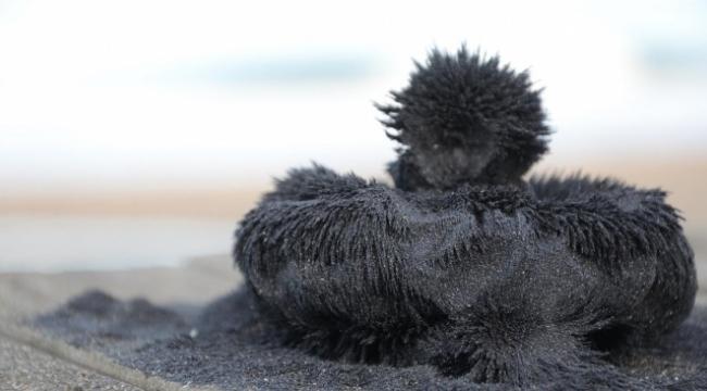 Sağlık cevheri: Manyetik siyah kum