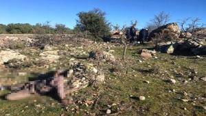 Boş arazide ölü bulundu