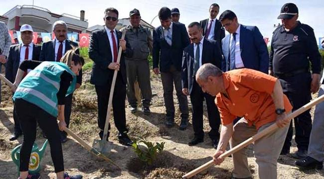 Hükümlülerden Adalet Ormanı'na 3 bin fidan