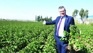 Barut: Çiftçi borçları faizsiz 2 yıl ertelensin