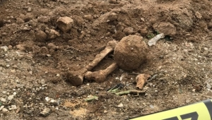 İnşaatta insan iskeleti bulundu