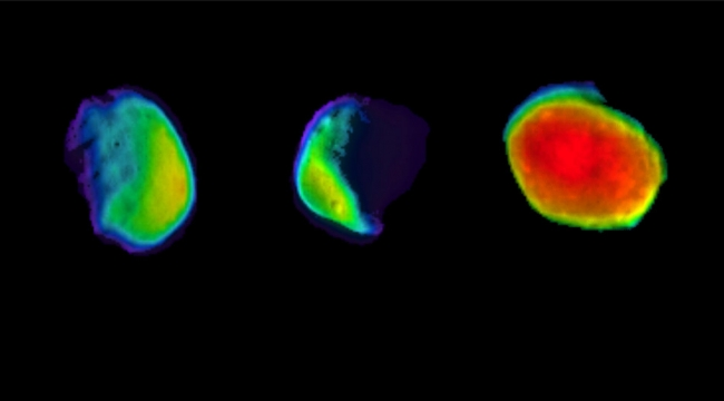 Mars'ın dolunay hali ilk kez görüntülendi
