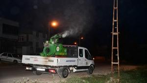 Adana'da sivrisinek saldırısıyla mücadele gece gündüz sürüyor
