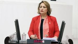 Şevkin: Çocuk cinayetlerini  araştırmak Meclis'in görevi