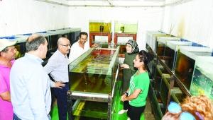 Vali Demirtaş ve eşi akvaryum balığı üretim çalışmalarını inceledi