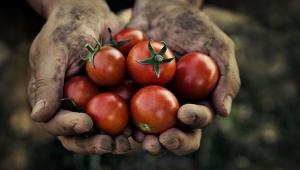 Adana tarımının geleceği bu çalıştayda masaya yatırılacak