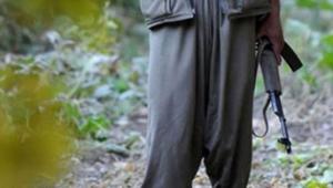İkna çalışması sonucu 1 PKK'lı teslim oldu