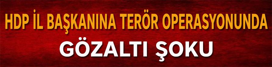 HDP İl Başkanına terör operasyonunda gözaltı şoku