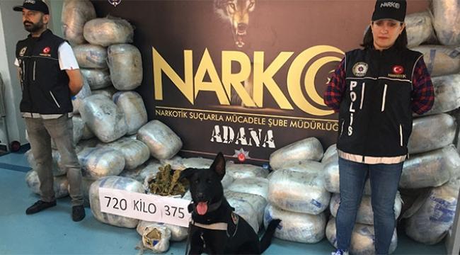 Adana'da 721 kilo esrar ele geçirildi