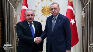 Cumhurbaşkanı Erdoğan TBMM Başkanı kabul etti