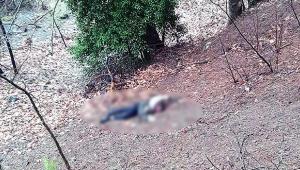 Kumalığı kabul etmeyen kadının başını taşla ezerek öldürdü