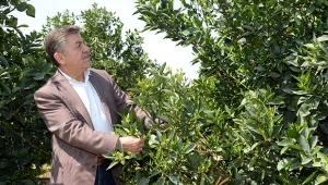Korkut: Tarımsal üretim seferberliği ilan edilmeli