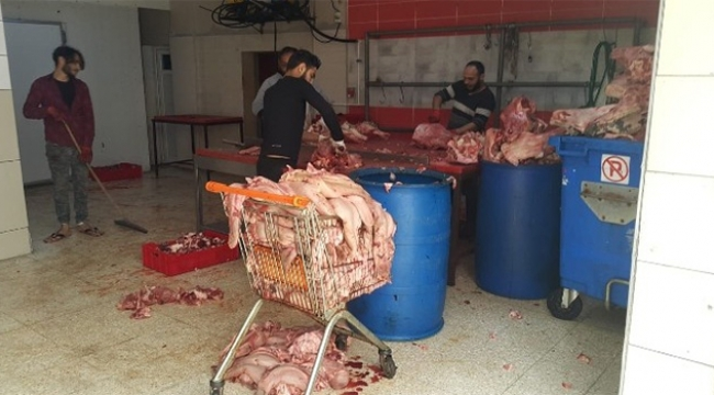 Adana'da 1,5 ton sakatat ele geçirildi