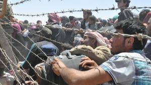 Suriyelilere girişimcilik desteği