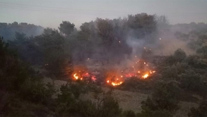 Orman yangını paniği 1 uçak, 5 helikopter
