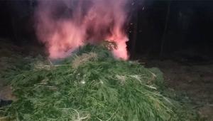 Ormanlık alanda 12 kilo 750 gram esrar ele geçirildi