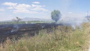 Tarladaki yangına işçiler müdahale etti