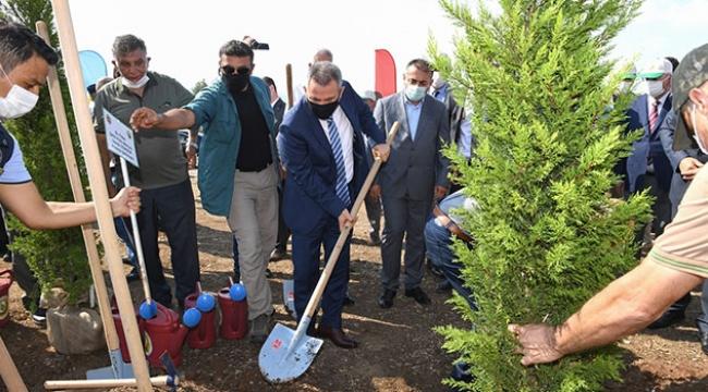 Vali Elban 15 Temmuz Demokrasi Şehitleri Hatıra Ormanı'nda