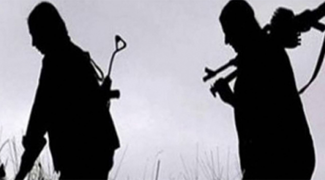 2 PKK/YPG'li terörist daha gözaltına alındı