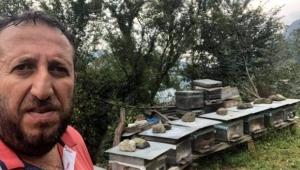Bir kişi arı sokması sonucu hayatını kaybetti