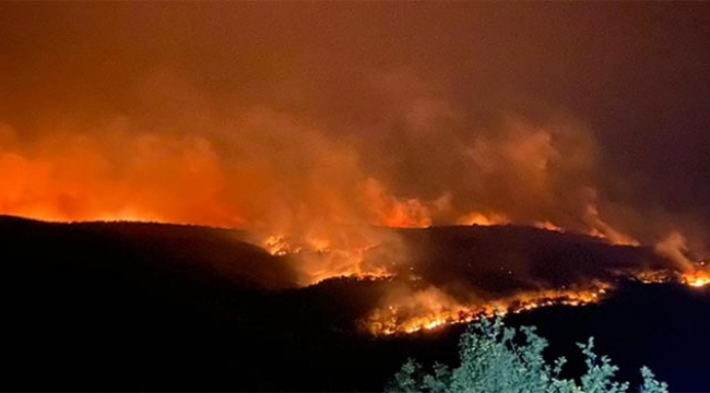 Orman yangını sınıra ulaştı...