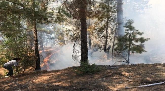 Adana'da orman yangını...