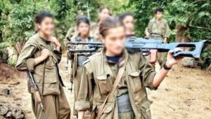 Terör örgüt PKK/KCK'ya yönelik operasyon düzenledi