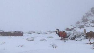 Hava sıcaklıkları sıfırın altına düşünce kar yağdı