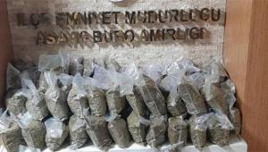 72 kilogram bonzai ele geçirildi