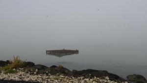 Yoğun sis nedeniyle gemi trafiği kapatıldı