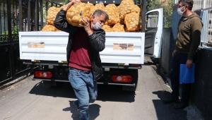 Patates dağıtımı başladı