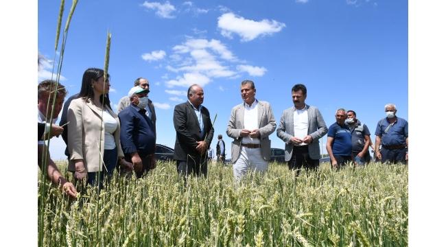 CHP Heyeti, Aksaray'da dolu mağduru üreticilerle buluştu, sorunları yerinde görüp iktidarı göreve çağırdı