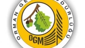Endüstriyel ağaçlandırma arazi hazırlığı hizmeti alınacaktır