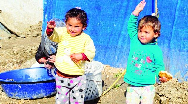 Adana tarımı Suriyelilere emanet!