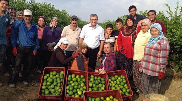 Adana'nın tarıma katkısı 5,6 milyar lira
