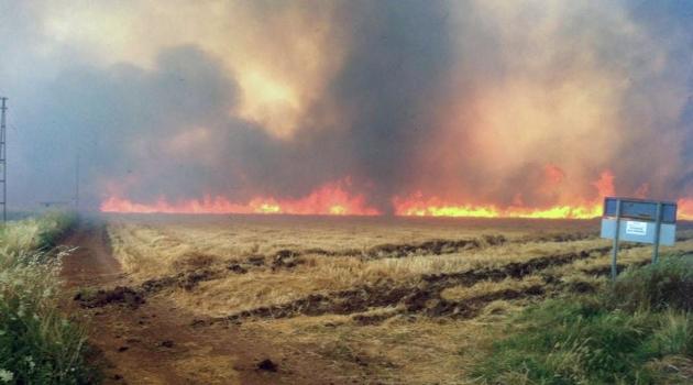 Anız yangınlarına kalıcı çözüm önerisi
