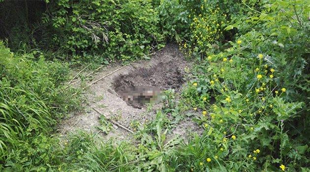 Ormanlık alanda ceset bulundu