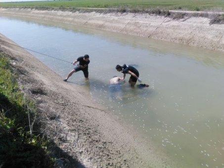 Sulama Kanalında Bulunan Erkek Cesedinin Kimliği Belirlendi
