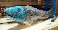 Dünyanın en pahalı balığı Kapadokya'da