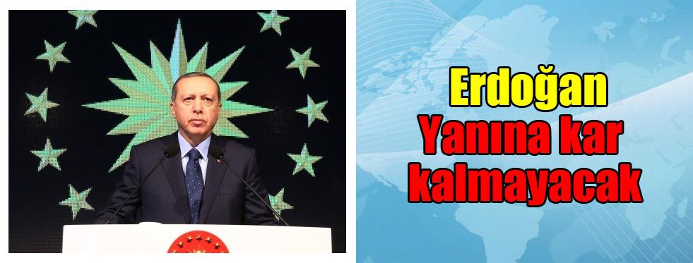 Erdoğan: Yanına kar kalmayacak
