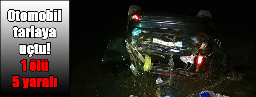 Otomobil tarlaya uçtu! 1 ölü 5 yaralı