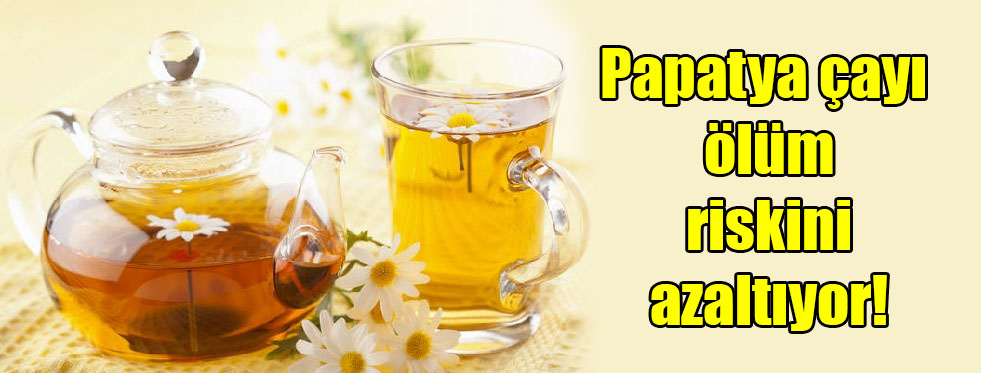 Papatya çayı ölüm riskini azaltıyor!