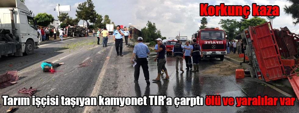 Tarım işçisi taşıyan kamyonet TIR'a çarptı ölü ve yaralılar var