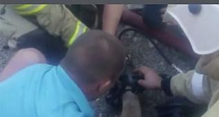 İtfaiyeciler köpeği hayata döndürdü