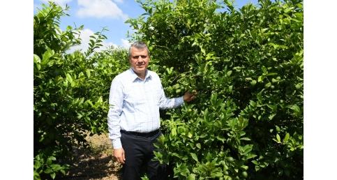 Ayhan Barut, Akdeniz Meyve Sineği (AMS) zararlısına karşı Meclis'te bütüncül mücadele istedi