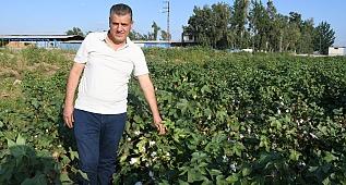 Ayhan Barut'tan hasat öncesi pamuk çağrısı