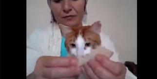 Kedisiyle Kahvaltı Yapan Kadın!